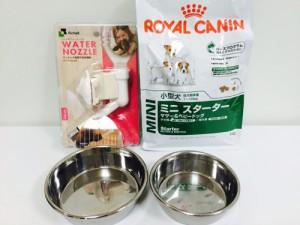 犬用給水器と食器の紹介